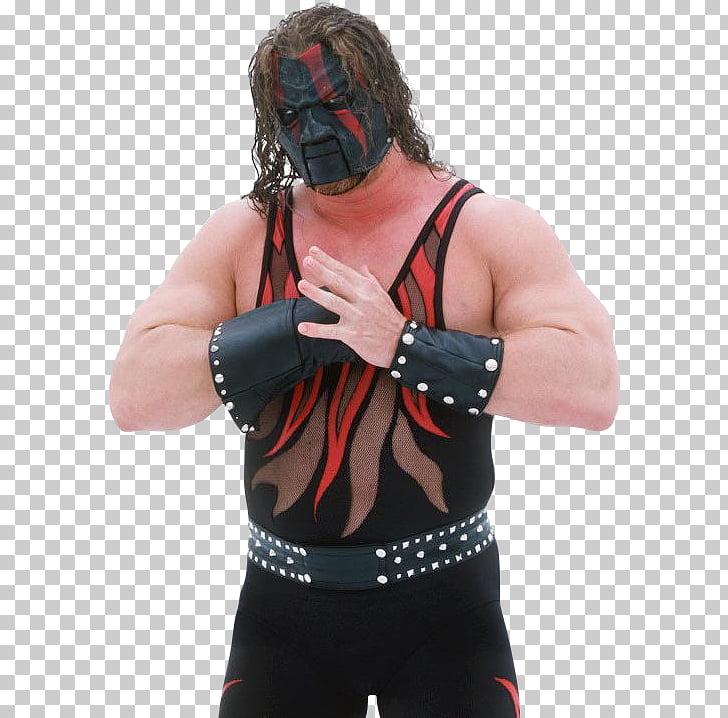 WWE Professional wrestling The Brothers of Destruction Mask.