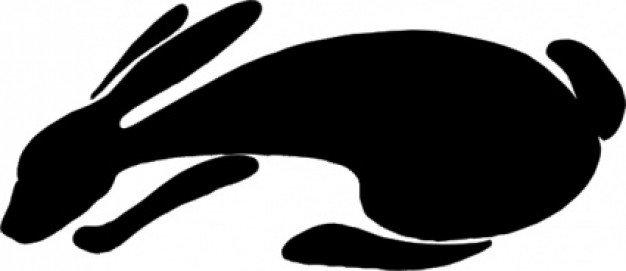 Bunny eye brow clipart.