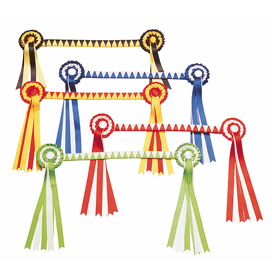 Show serreta with coloured ribbon browband and rosettes.