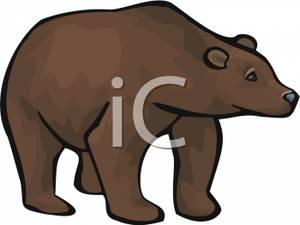 Art Image: A Brown Bear.