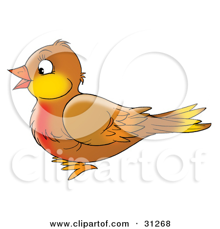Clipart Airbrushed Robins Gathering Berries In Winter Branches.