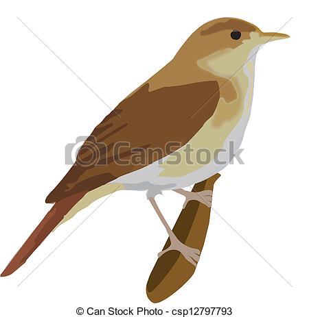 EPS Vectors of bird,.