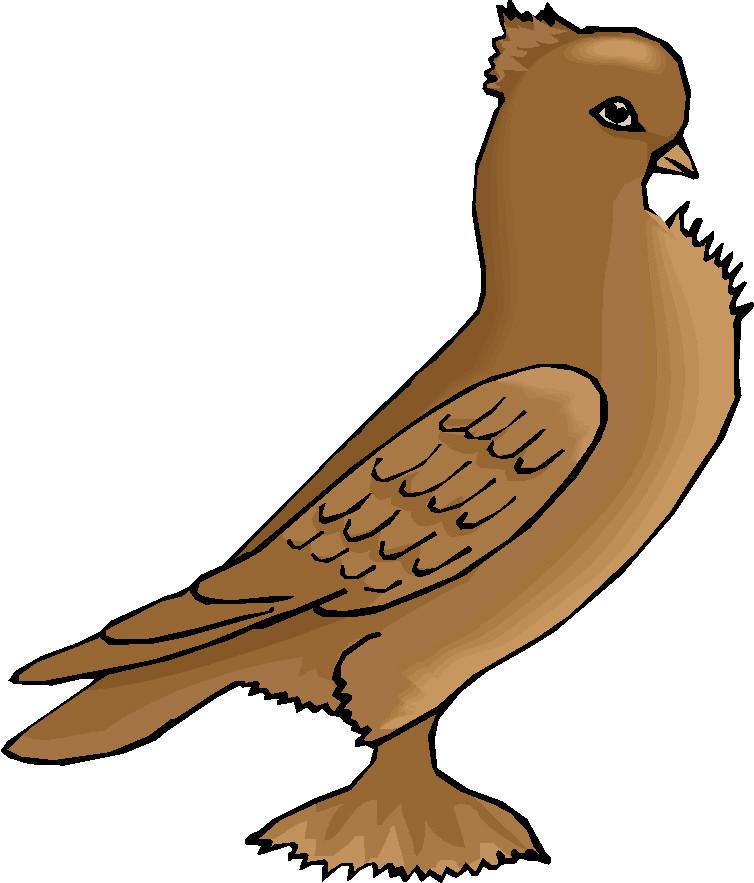 Baby Bird Clipart.