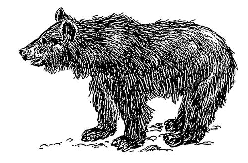 Free Black Bear Clipart, 1 page of Public Domain Clip Art.