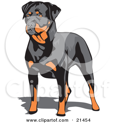 Clipart Illustration of a Muscular Brown And Black Rottweiler Dog.