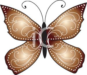 Brown Butterfly.