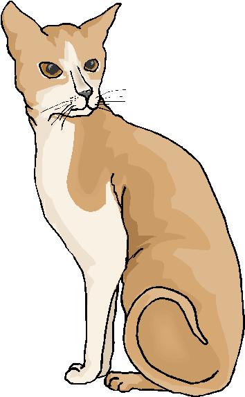 Brown cat clipart #12