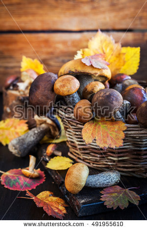 "wood Basket For Mushrooms"" Stock Photos, Royalty."