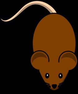 Brown Clip Art at Clker.com.