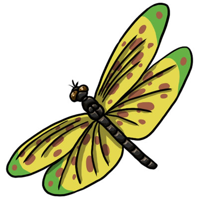 25 FREE Dragonfly Clip Art Drawings and Colorful Images.