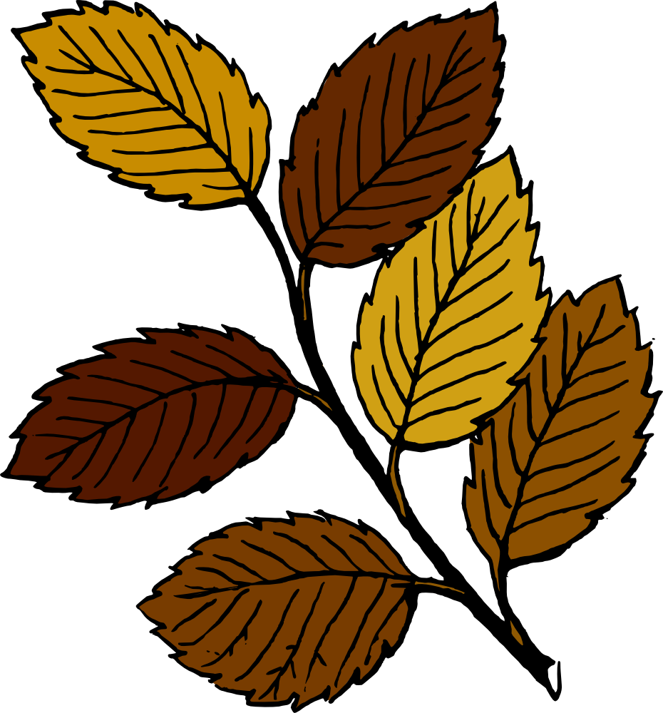 Dry leaves clipart.