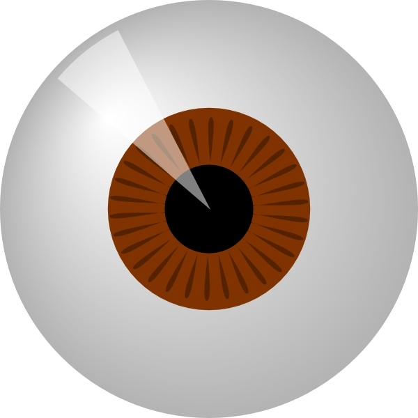 Brown Eye clip art Free vector in Open office drawing svg ( .svg.