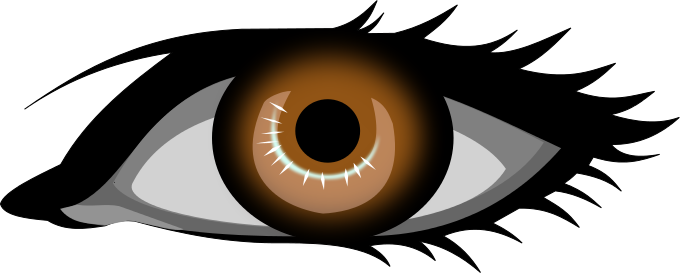 Brown eyes clip art.
