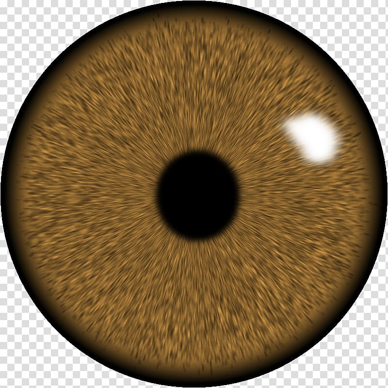 Brown human eye, Eye Lens GIMP Iris, Eye transparent.
