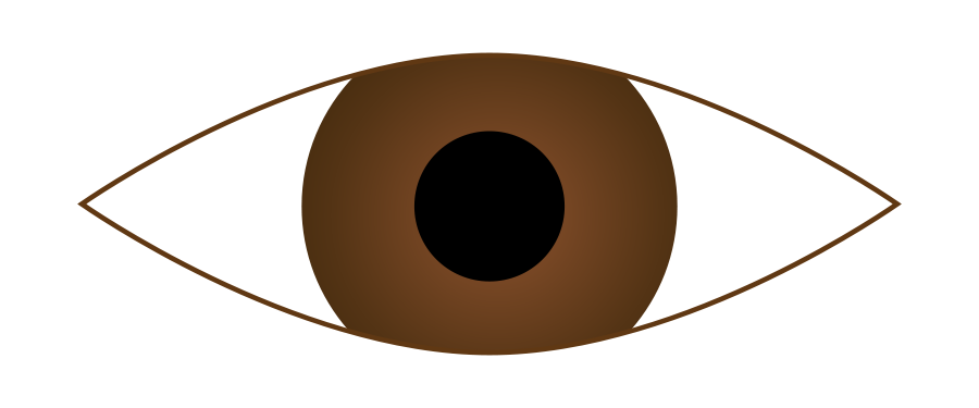 Brown eyes clipart png.