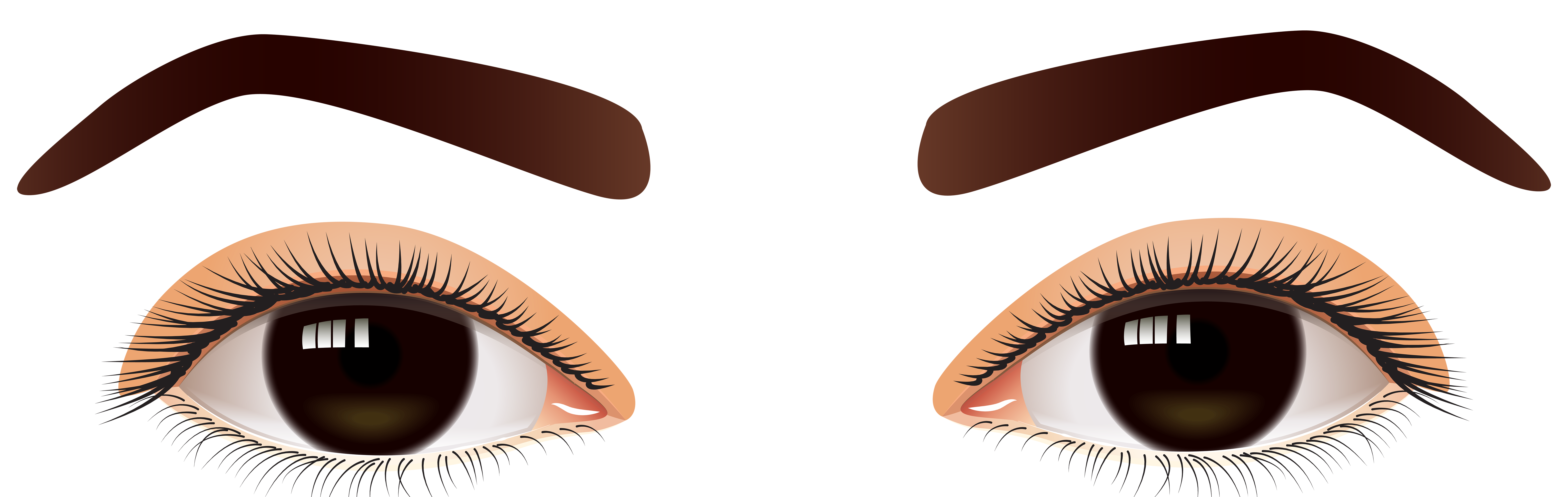 Female Brown Eyes PNG Clip Art.