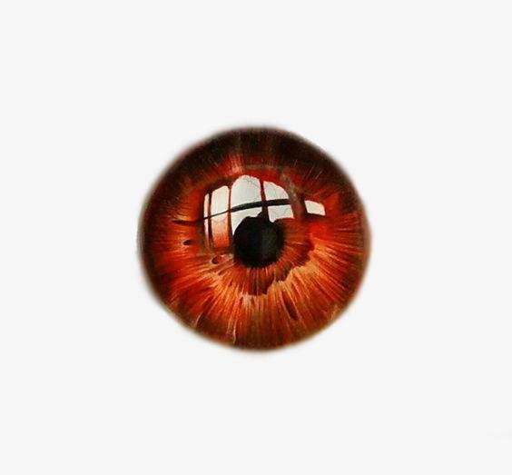 Brown Eyes, Eyes Clipart, Glasses Deductible Elements, Big Eyes PNG.