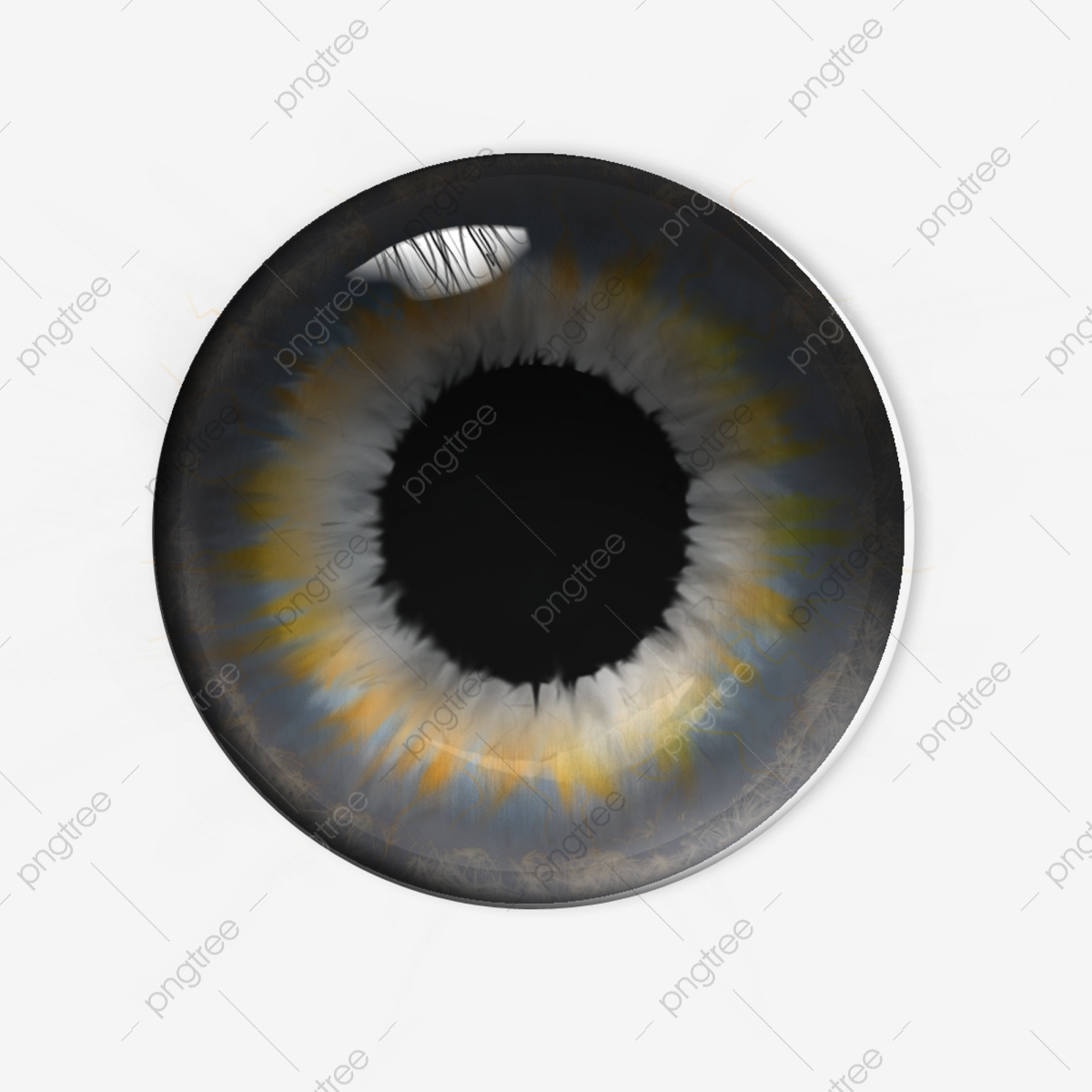 Ps Production Brown Eye, Pupil, Ps Production, Brown Eyes PNG.