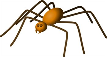 House spider clipart - Clipground
