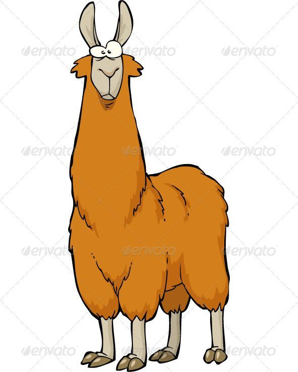 1000+ ideas about Cartoon Llama on Pinterest.