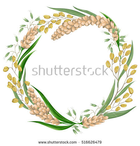 Millet Stock Photos, Royalty.