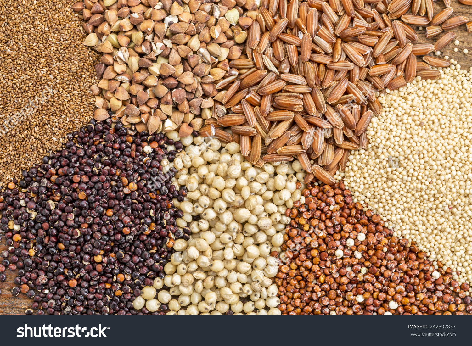 Variety Gluten Free Grains Buckwheat Amaranth Stock Photo.