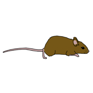 Brown Mouse clipart, cliparts of Brown Mouse free download (wmf, eps.