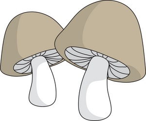 Mushrooms Clipart Image.
