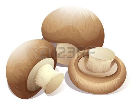 Brown Mushrooms Stock Photos Images. Royalty Free Brown Mushrooms.
