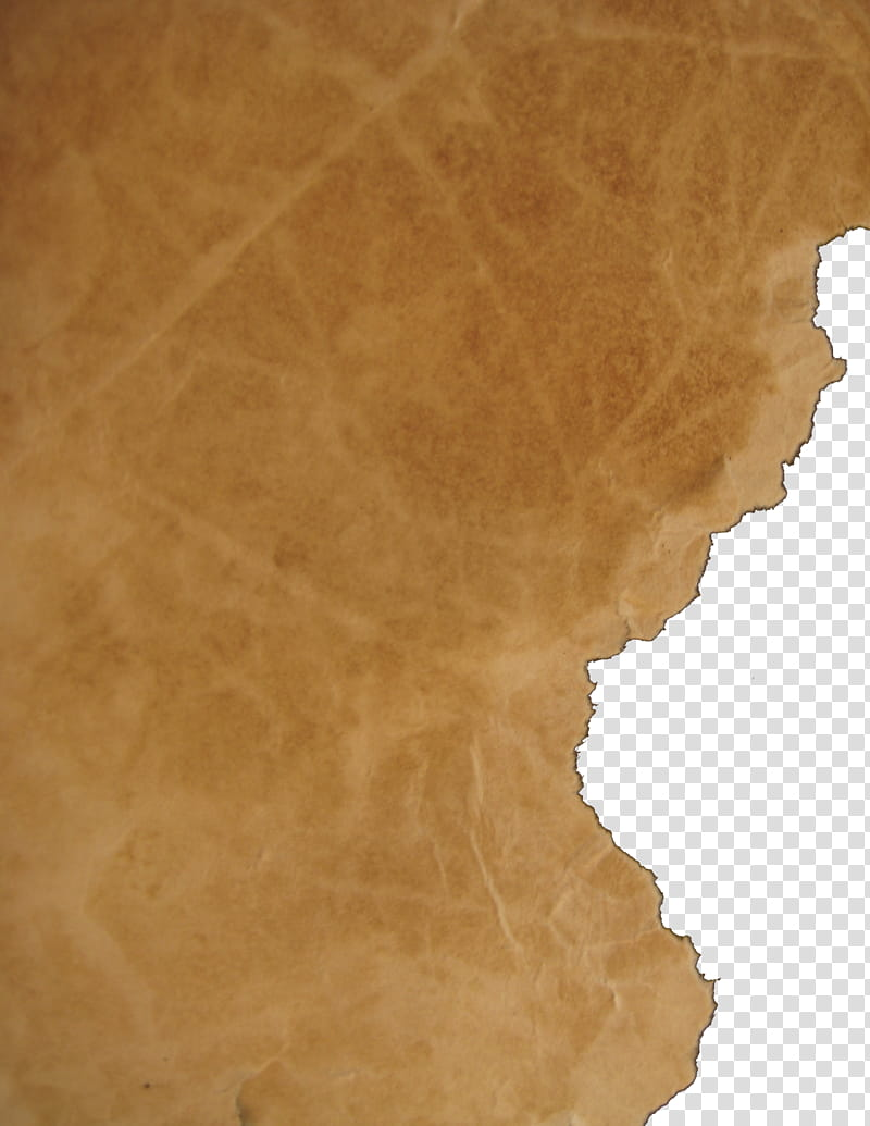 Parchment, wripped brown printer paper transparent background PNG.
