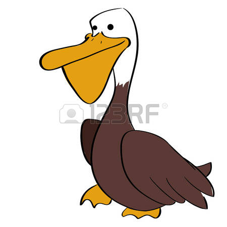 55 Brown Pelican Stock Vector Illustration And Royalty Free Brown.