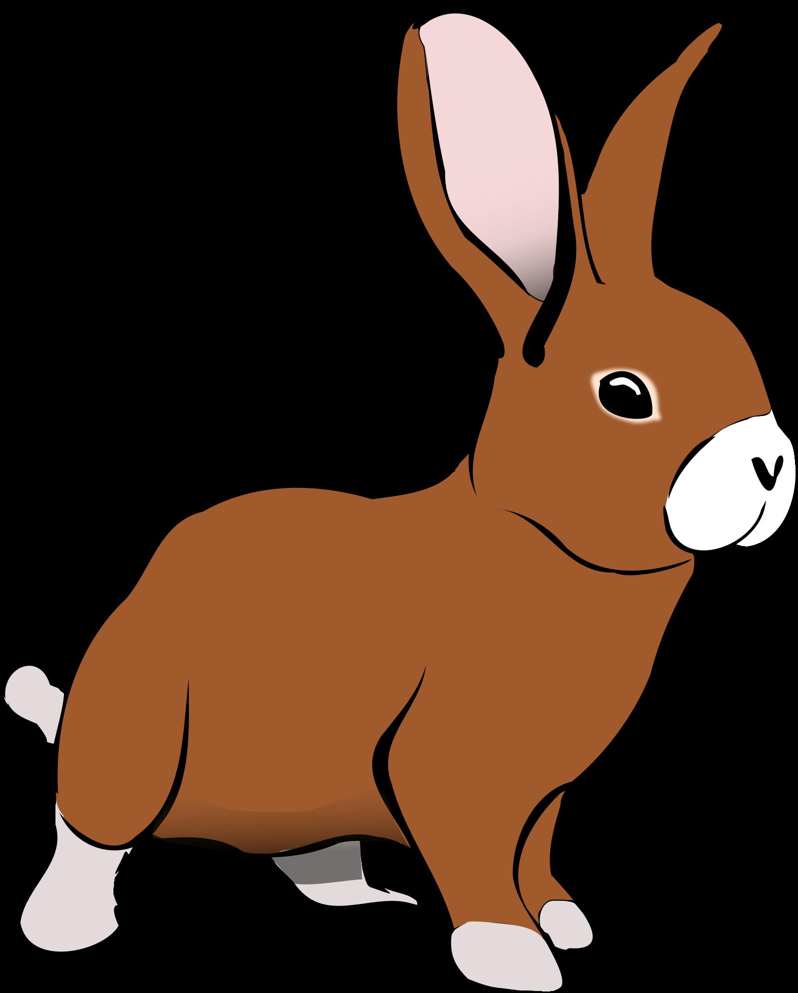 Clipart brown rabbit.