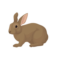 Rabbit Clipart Vector Images (over 1,200).