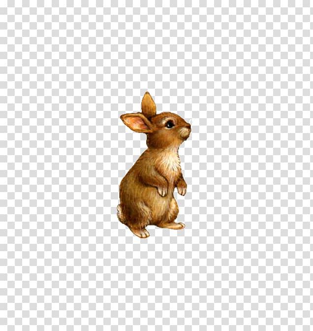Brown rabbit illustration, Domestic rabbit , Cute little stuffed.