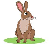 Brown Rabbit Clipart Size: 91.