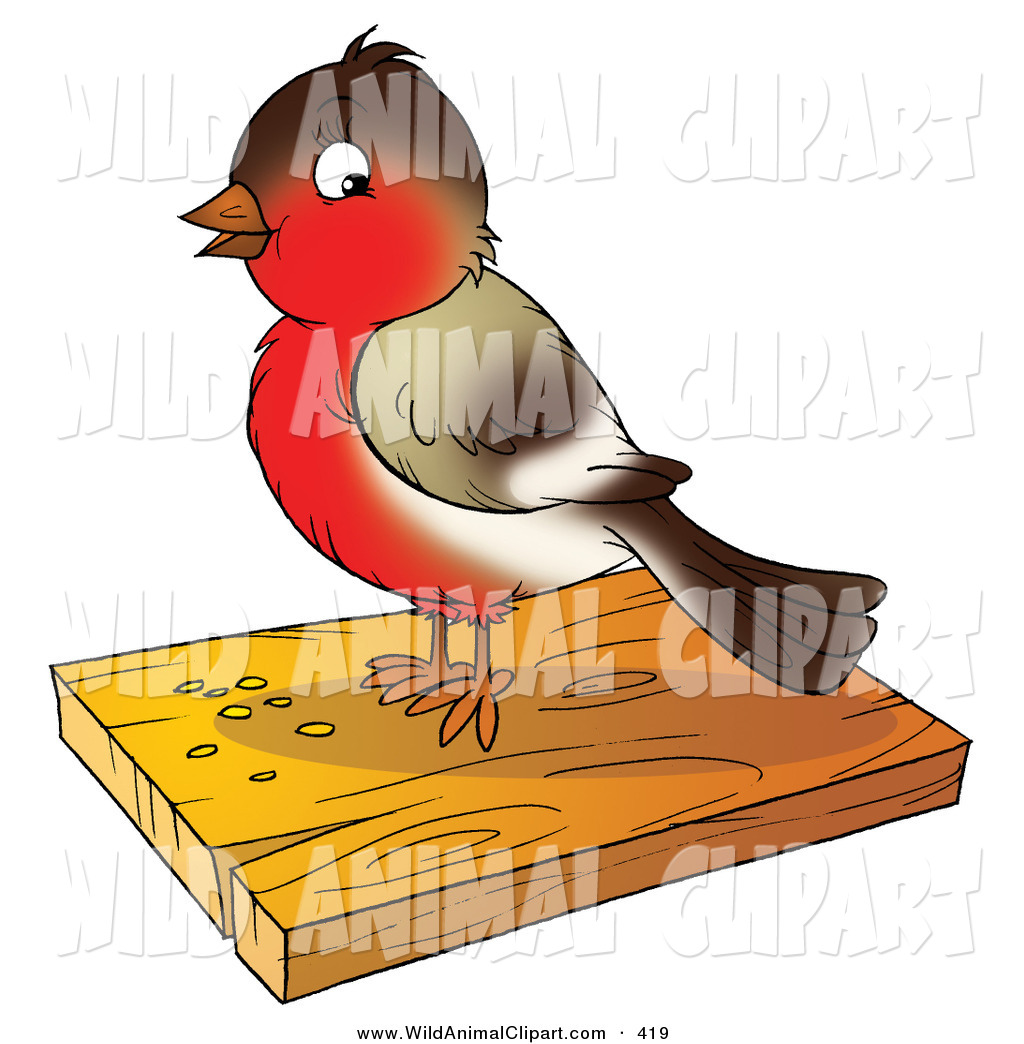 Clip Art of a Cute Brown and Red Robin Bird Eating Seed on a.