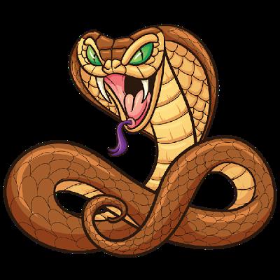 Snake Images.