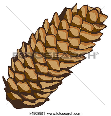 Brown Spruce Clipart Clipground