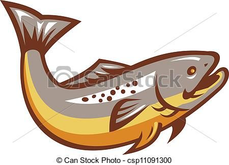 Brown trout Clip Art Vector Graphics. 71 Brown trout EPS clipart.