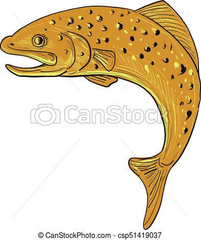 Brown trout Clip Art Vector Graphics. 113 Brown trout EPS clipart.