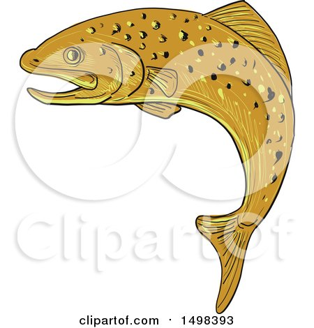Clipart of a Sketched Jumping Spotted Brown Trout.