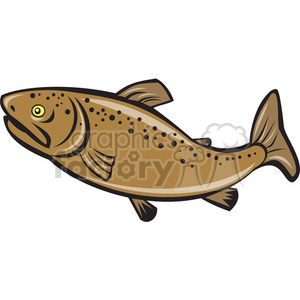 brown trout side ISO clipart. Royalty.