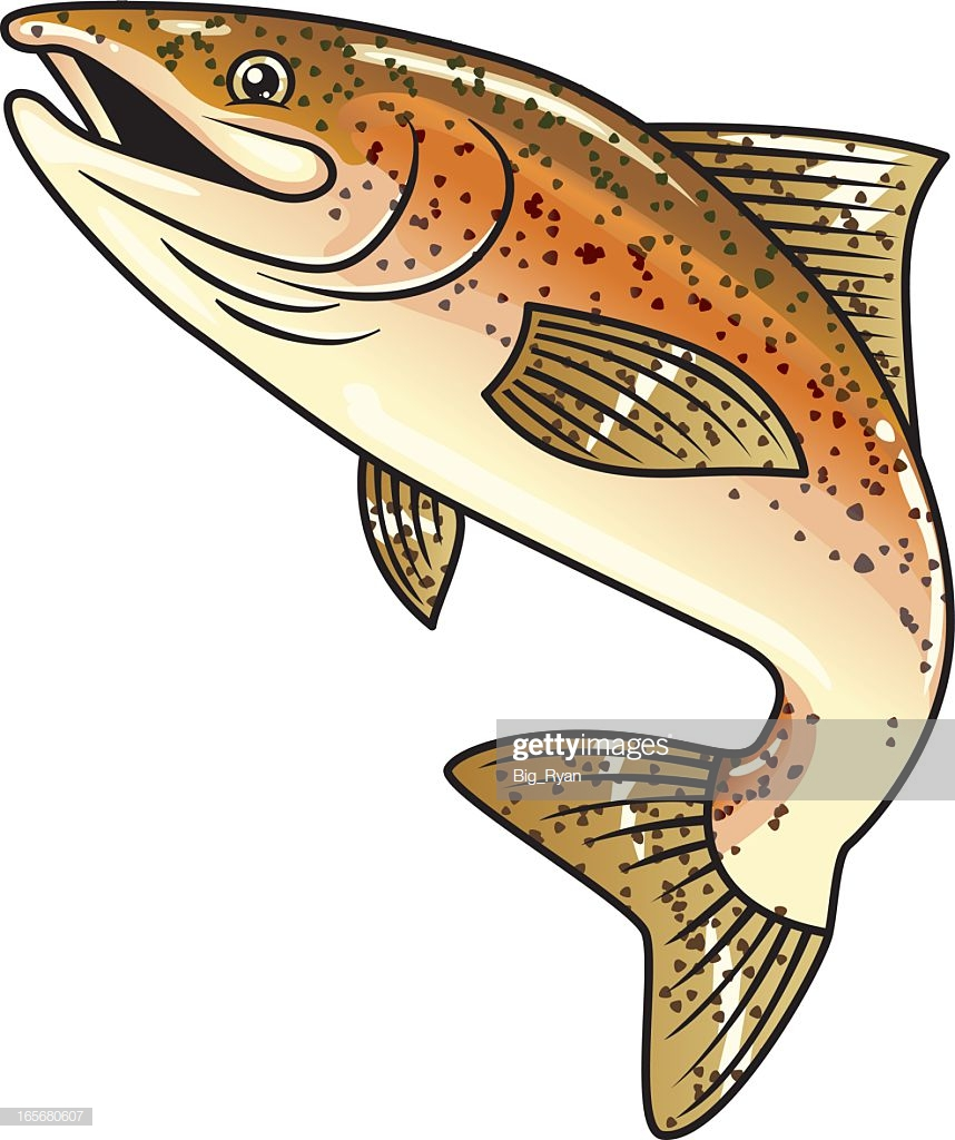 30 Top Brown Trout Stock Illustrations, Clip art, Cartoons, & Icons.