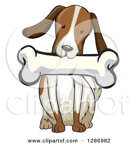 Clipart of a Brown and White Dog Sitting with a Bone in His Mouth.