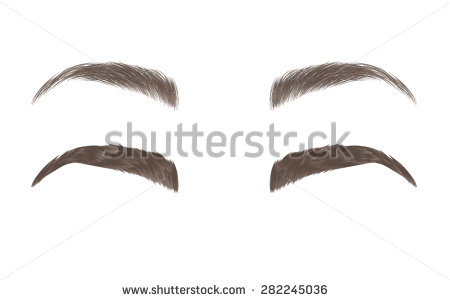 Cartoon eyebrows clipart.
