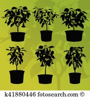 Brugmansia Clip Art Vector Graphics. 9 brugmansia EPS clipart.
