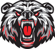 Bruin Clipart And Illustrations.