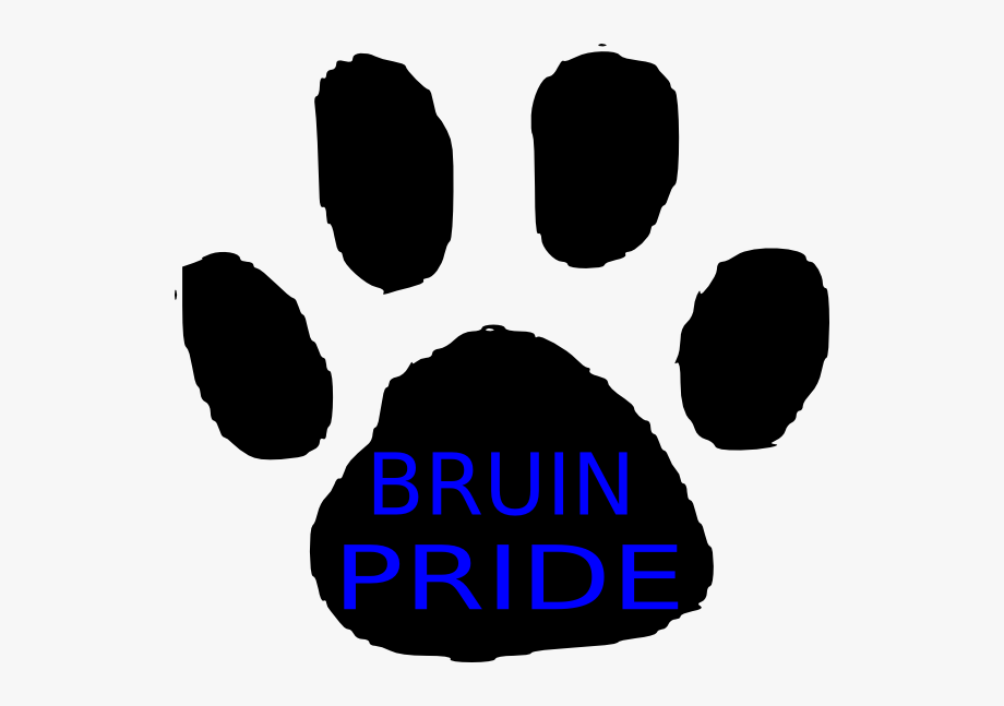 How To Set Use Bruin Pride Svg Vector.