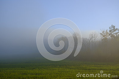 Brumous Stock Photos, Images, & Pictures.
