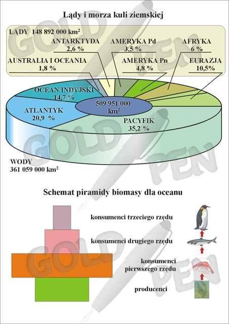 Ekosystem mórz i oceanów.